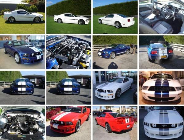 Mustangi 2005