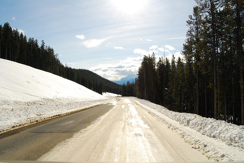 Bow Valley Parkway Ice Road (Fot.Flickr_Matt Seppings Lic. CC)