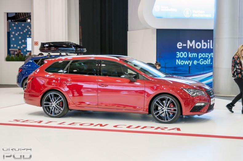 Poznań motor show (26)